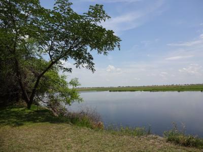Eine Bootssafari auf dem Chobe Fluss in Botswana ist ein besonders eindrucksvolles Erlebnis