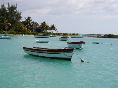 Lassen Sie in Mauritius an türkisblauen palmengesäumten Stränden die Seele baumeln
