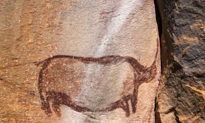 Rhino Caves im Welterbe Tsodilo Hills