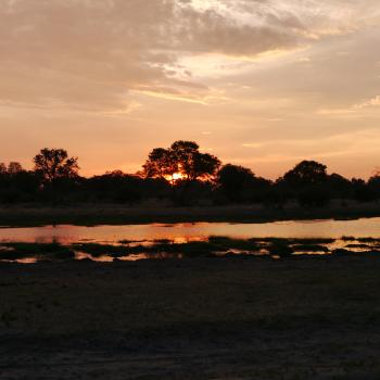 Honeymoon in Zambia und Botswana